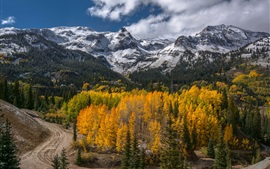 Preview wallpaper Mountains, forest, trees, road, autumn scenery