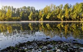 Natureza paisagem, lago, rio, rochas, árvores, reflexão da água