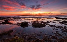 Mar do sol, praia, algas, céu vermelho