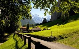 Suiza, Lauterbrunnen, Jungfrau, ciudad, las montañas, los Alpes