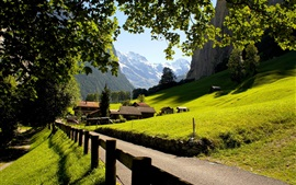 Preview wallpaper Switzerland, Lauterbrunnen, Jungfrau, city, mountains, the Alps