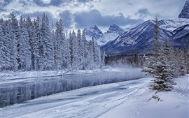Preview wallpaper Winter mountains, forest, trees, river, snow, ice