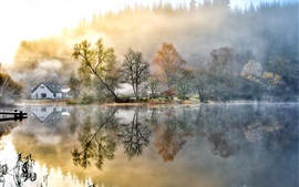Beautiful painting, house, forest, lake, nature, morning, fog