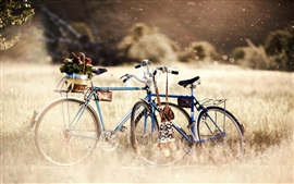 Preview wallpaper Bike in the nature