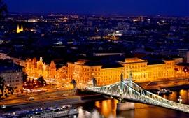 Будапешт, Венгрия, мост Свободы, река, Дунай, огни, здания, ночь
