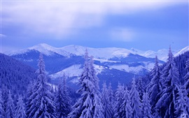 Preview wallpaper Cold winter, sky, clouds, mountains, trees, spruce, thick snow