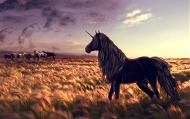 Creative design, unicorn, fields, sunlight
