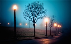 Preview wallpaper Fog, city, street, park, lights, night