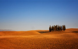 Preview wallpaper Italy, Tuscany, arable land, trees, sky, dry weather