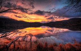 Preview wallpaper Lake, sunset, evening, forest, trees, water reflection, sky, clouds