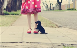 Little girl legs, black puppy