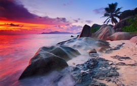 Preview wallpaper Seychelles, La Digue Island, Indian Ocean, sea, stones, palm trees, sunset