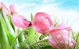Preview wallpaper Spring, pink flowers, grass, tulips