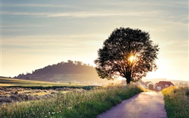 Preview wallpaper Summer landscape, road, tree, house, sunrise, light rays