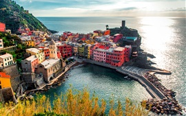Vernazza, city, Italy, Cinque Terre, houses, rocks, coast