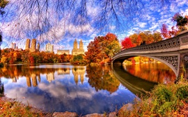 Preview wallpaper Autumn, nature, park, trees, water, bridge, reflection, Central Park