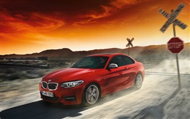 BMW 2 Series red coupe, car in speed