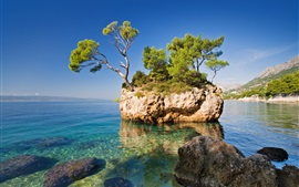Preview wallpaper Nature, sea, rock, trees, lonely island