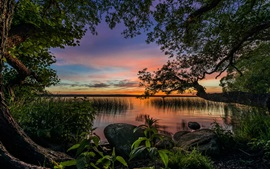 Preview wallpaper Paradise landscape, trees, lake, dusk