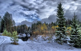 Preview wallpaper Winter, snow, forest, trees, river, clouds, dusk
