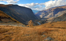 Altai, autumn, grass, mountains, clouds Wallpapers Pictures Photos Images