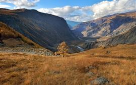 Алтай, осень, трава, горы, облака