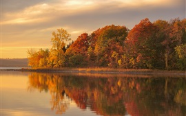 Dusk autumn, forest, lake, water reflection Wallpapers Pictures Photos Images
