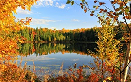 Golden autumn, fall, leaves, sky, pond, lake, clouds, trees