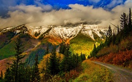 Preview wallpaper Mountains, sky, clouds, snow, forest, trees, leaves, colorful