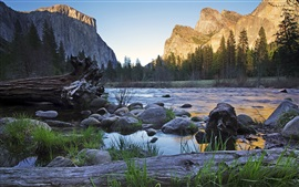 River, mountain, summer, rocks, trees Wallpapers Pictures Photos Images