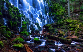 Preview wallpaper USA nature landscape, Oregon, Ramona Falls, stones