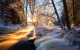 Winter, trees, river, ice, snow, sunset