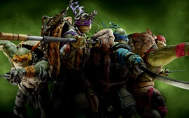 Preview wallpaper 2014 Teenage Mutant Ninja Turtles HD