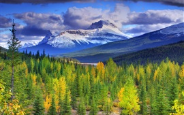 Banff National Park, Alberta, Canada, mountains, sky, forest, trees