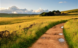 Countryside, England, Britain, fields, road, grass, wind