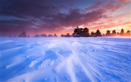 Preview wallpaper France, Provence, plains, snow, winter, trees, sunset