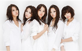 Preview wallpaper Korea KARA girls 02