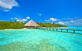 Preview wallpaper Maldives, sky, sea, ocean, island, palm trees, bungalows, bridge, pier