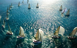 Sea, yachts, sail, blue, sunlight