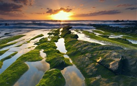 Preview wallpaper Spain, coast, sea, moss, sunrise