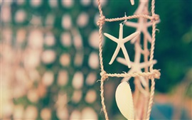 Preview wallpaper Still life, rope, focus, shell, starfish