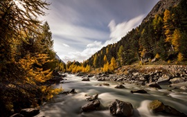 Switzerland, Val Roseg, autumn, river, trees, rocks