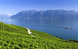 Швейцария, Альпы, озеро, горы, лето