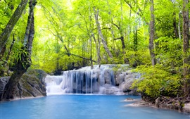 Trees, waterfalls, forest, river, summer