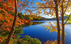 Preview wallpaper Autumn, lake, trees, forest, sky