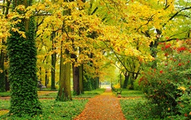 Preview wallpaper Autumn, park, trees, yellow leaves, paths, benches