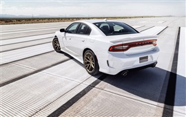 Preview wallpaper Dodge Charger SRT white car back view