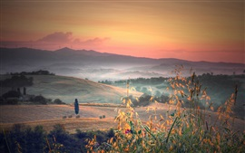 Preview wallpaper Italy, Tuscany, hills, trees, fields, grass, morning, fog