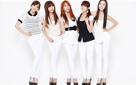 Preview wallpaper Korea KARA girls 07