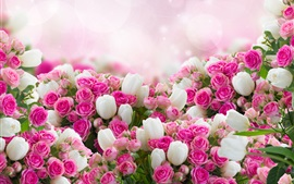 Many flowers, white tulips, pink rose